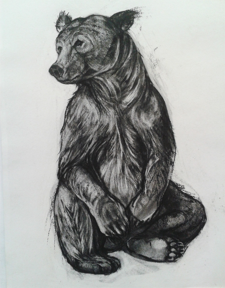 Seated Brown Bear (2014)