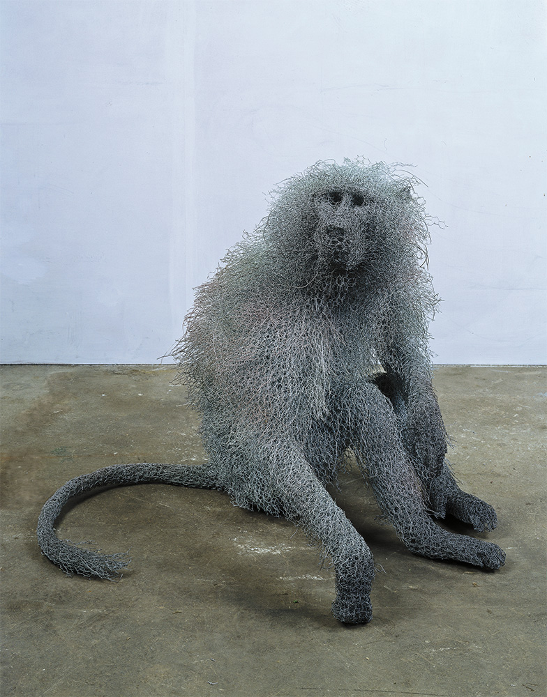 Seated Male baboon (2003)