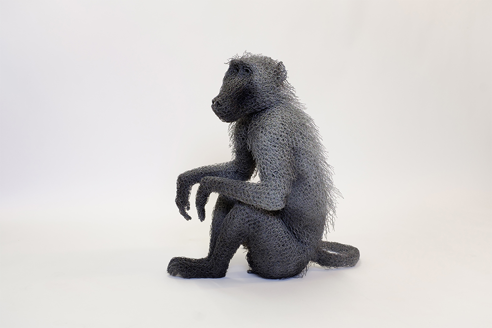 Seated Male Chacma (2017)